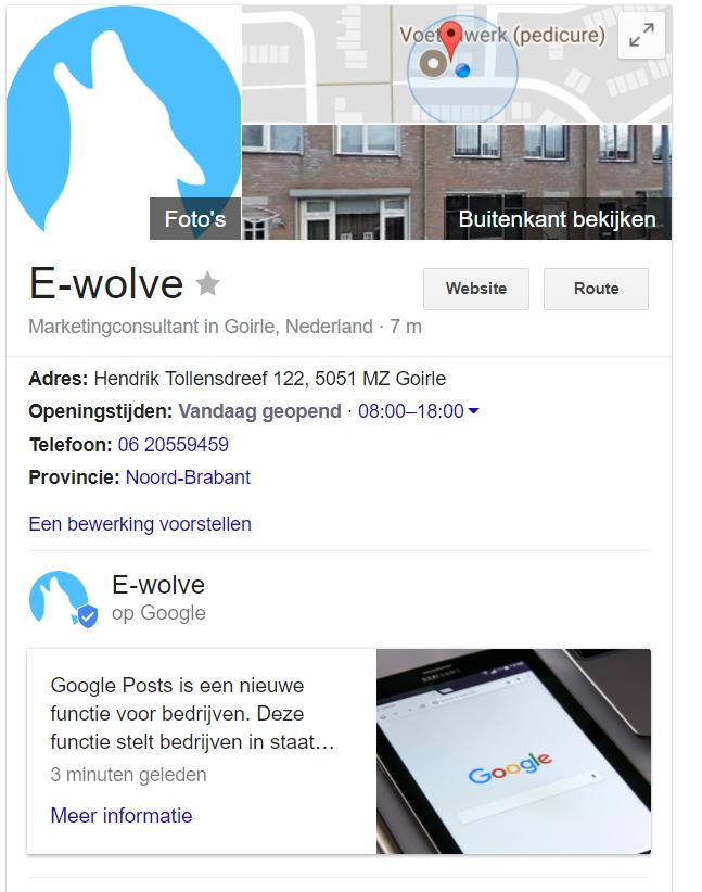 Google Posts van E-wolve