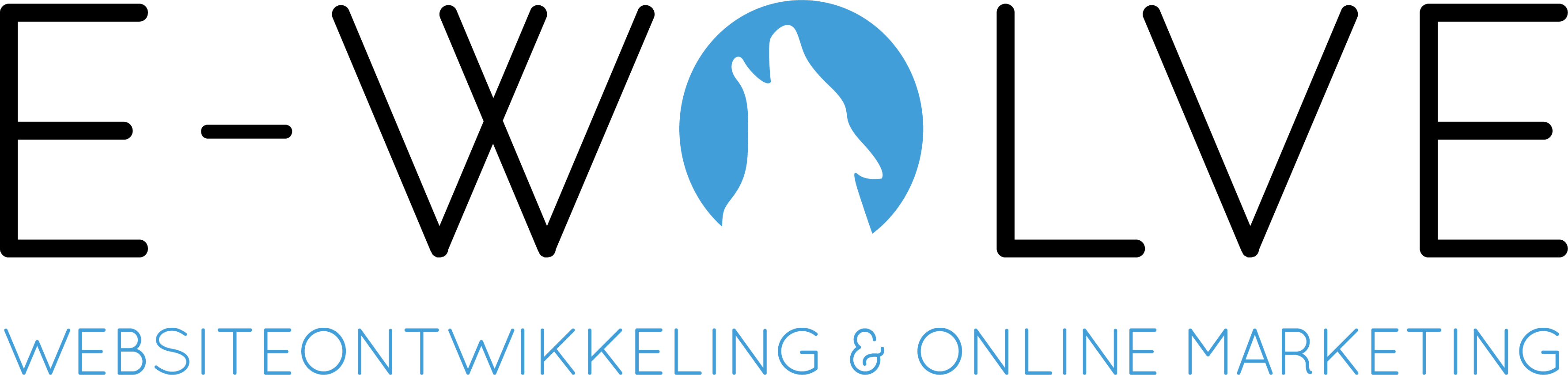 E-wolve | Websiteontwikkeling & Online Marketing