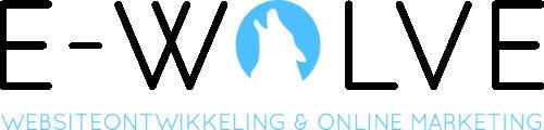 E-wolve website ontwikkeling Tilburg
